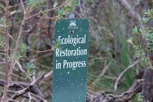 #GenerationRestoration poster trail: UN Decade on Ecosystem Restoration
