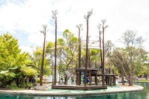 A Gondwana Adventure in Kings Park
