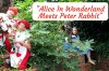 Alice in Wonderland Meets Peter Rabbit