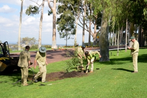 Join the BGPA team and enjoy the variety - arboriculture. Photo: D. Blumer.