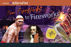 Firesticks Kaarta Koomba