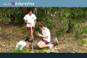 Ecological Field Studies