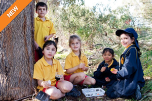 Students studying native flora and fauna in Kings Park bushland. Photo: BGPA