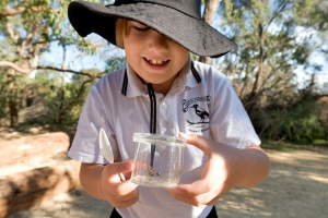 A girl examining an ant in a container in Kings Park bushland. Photo: BGPA