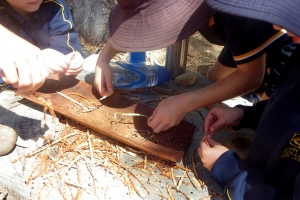 Nyoongar Boodja program