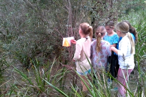Orienteering I (Years 3-6) program
