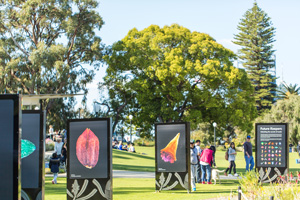 Future Keepers exhibition during Kings Park Festival 2016