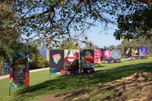 'Seeds to superstars' exhibition showed a journey from a tiny seed to a blooming flower to immortalisation in art in a stunning outdoor display. Photo: Ji Min..