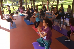Visitors took part in a variety of activities, including yoga, meditation and tai chi classes. Photo: Soul Vida.