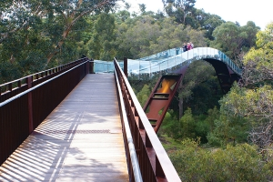 Lotterywest Federation Walkway Elevated Walkway and Glass Bridge