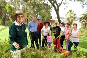 Free guided walks in Kings Park