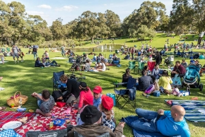 Hundreds of picnickers relax on the lawns in the Western Australian Botanic Garden, many with prams. Photo: J. Thomas.