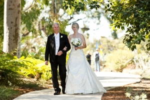 A wedding in Kings Park