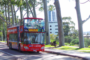 Perth Explorer Bus tours through Kings Park and Botanic Garden.