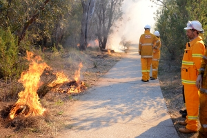 The low-intensity fire in Kings Park in May 2015 controlled by BGPA staff