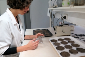 Analysis of soil hydrophobicity in the laboratories of Kings Park and Botanic Gardens.